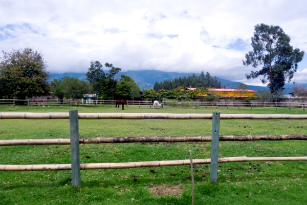 horse stables looking out into the Otavalo countryside