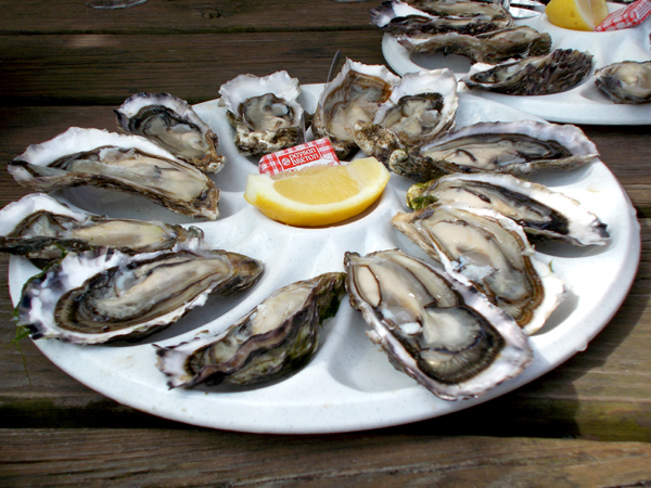 Oysters in Arcachon (photo courtesy of 2infrance.com)